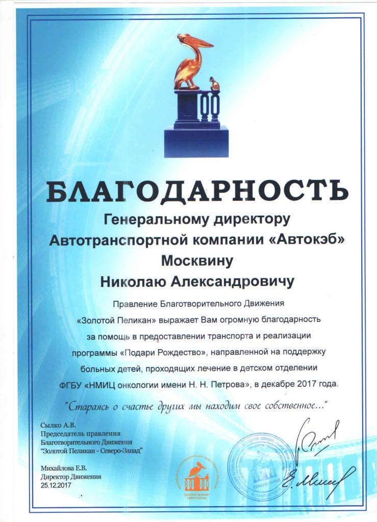 благодарность от Михайловой Е.В. от 25.12.17